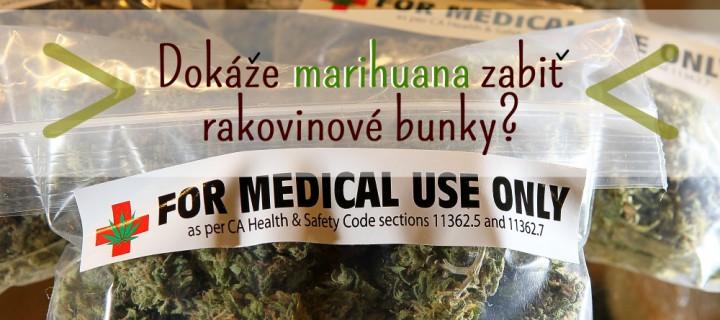 Americká vláda priznala, že marihuana zabíja rakovinové bunky