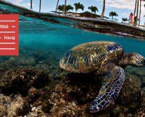 Hovorí sa, že príroda nemôže byť gýč, na Havaji ním však je
