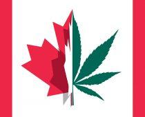 Kanada od dnes povolila držanie a užívanie marihuany