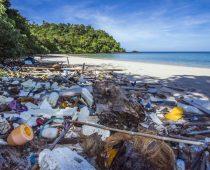 Austrálska idea, ktorá zachraňuje planétu