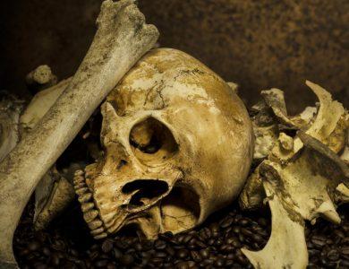 Horor Hory majú oči: Horor, za ktorým je skutočná rodina kanibalov