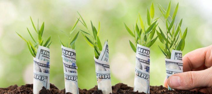 Investovanie peňazí v roku 2019. Do čoho sa (ne)oplatí vraziť peniaze? Časť 2.