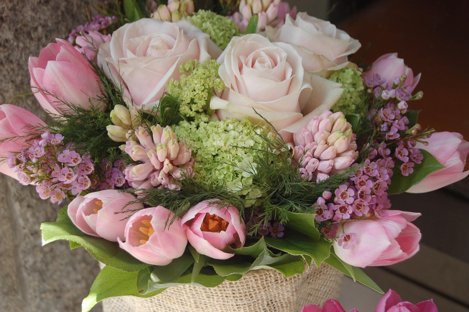kvety a viagra